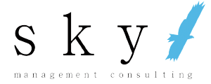 株式会社skyマネジメントコンサルティング